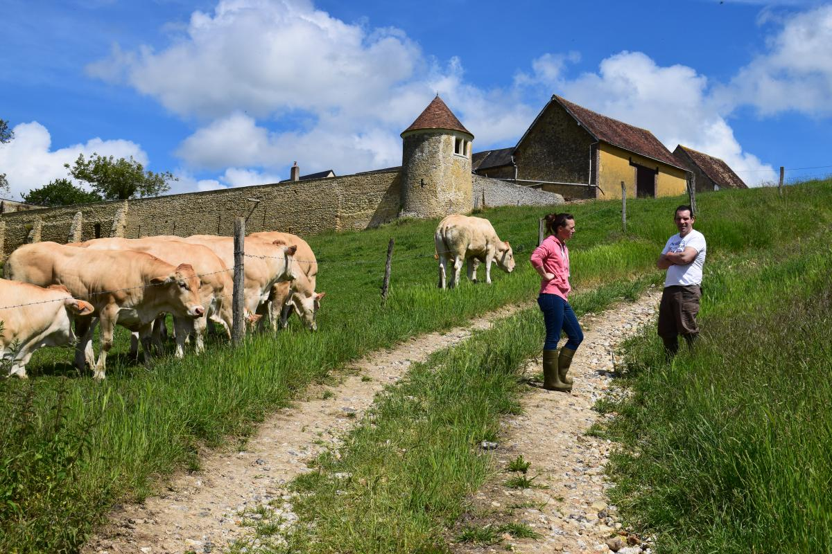 Le contact direct avec les éleveurs régionaux nous garantit une très bonne traçabilité